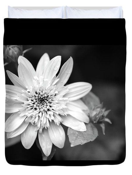 Duvet Cover featuring the photograph Black And White Sunrise Coreopsis by Christina Rollo