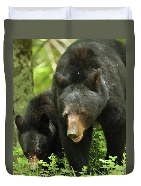Black Bear And Cub On Ground Duvet Cover by Coby Cooper