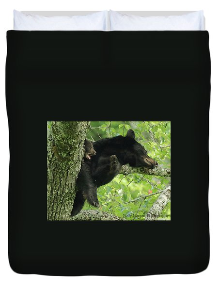 Black Bear In Tree With Cub Duvet Cover by Coby Cooper