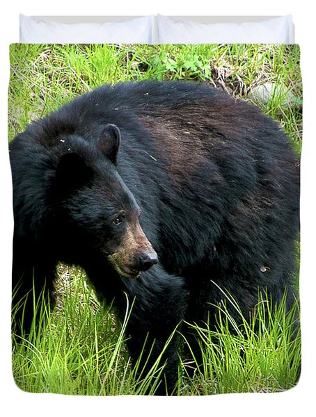 Black Bear Duvet Cover