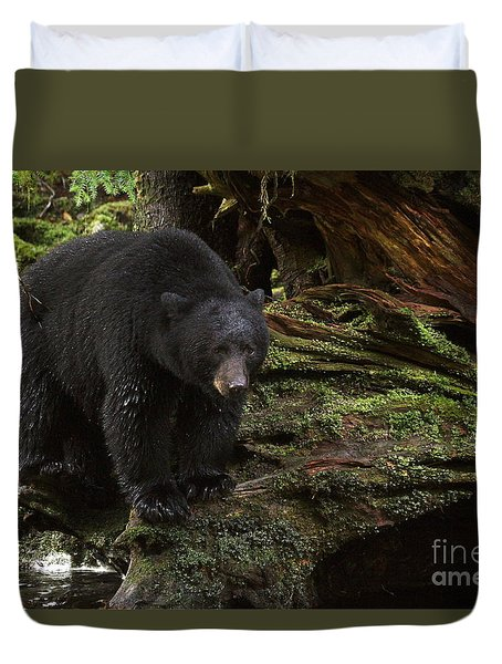Duvet Cover featuring the photograph Black Bear On Shore by Myrna Bradshaw
