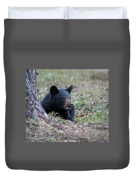Black Bear Resting Duvet Cover