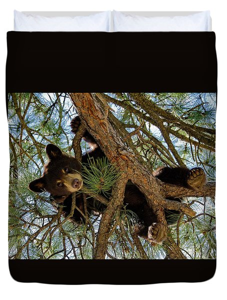 Duvet Cover featuring the photograph Black Bear by Ron White