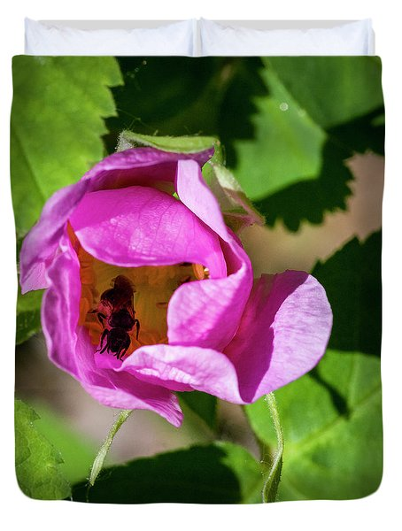 Duvet Cover featuring the photograph Black Bee Collecting Pollen by Darcy Michaelchuk