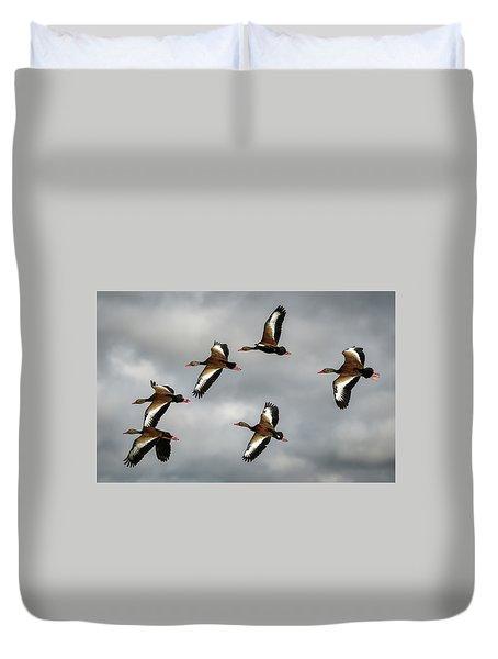 Black Bellied Whistling Ducks Duvet Cover