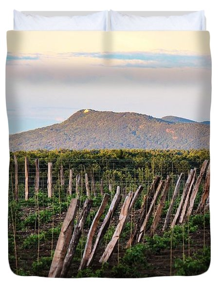 Black Birch Vineyard And Summit House View Duvet Cover