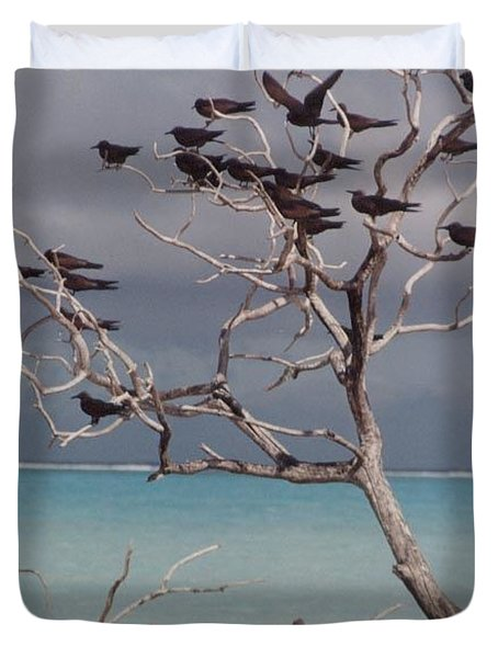 Duvet Cover featuring the photograph Black Birds by Mary-Lee Sanders