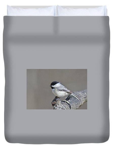 Duvet Cover featuring the photograph Black Capped Chickadee 1128 by Michael Peychich