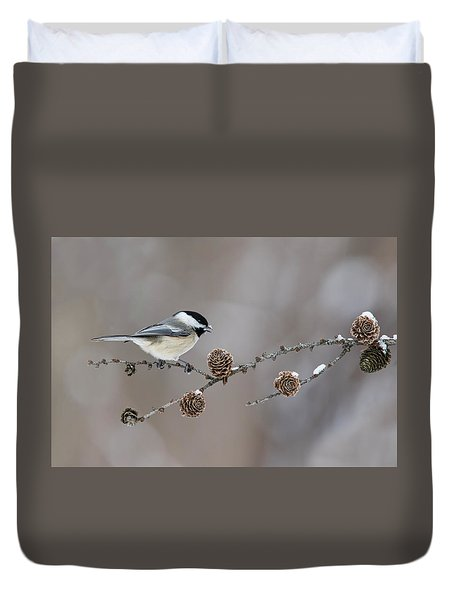 Duvet Cover featuring the photograph Black-capped Chickadee by Mircea Costina Photography
