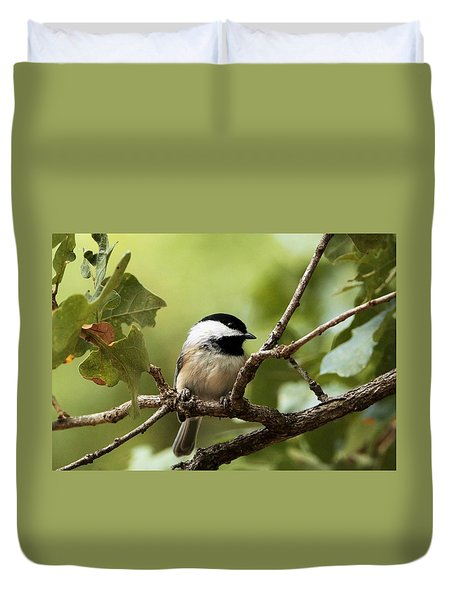 Black Capped Chickadee On Branch Duvet Cover
