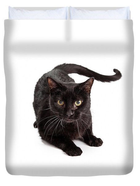 Black Cat Laying Looking At Camera Duvet Cover