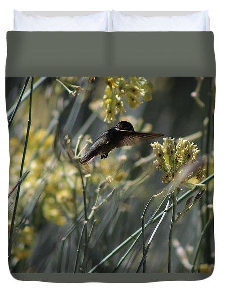 Black Chinned Hummingbird In Garden Duvet Cover by Colleen Cornelius