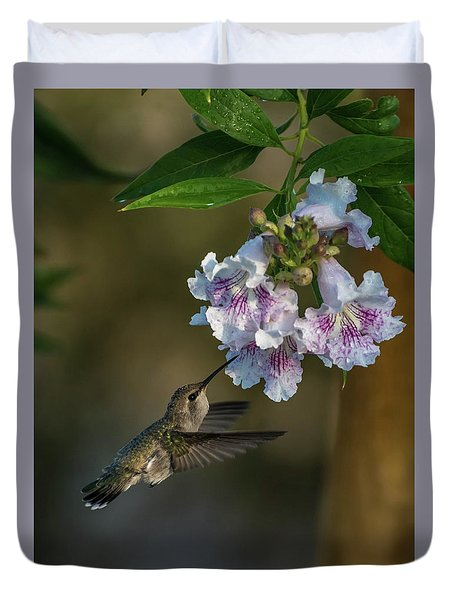 Black-chinned Hummingbird Duvet Cover by Martina Thompson