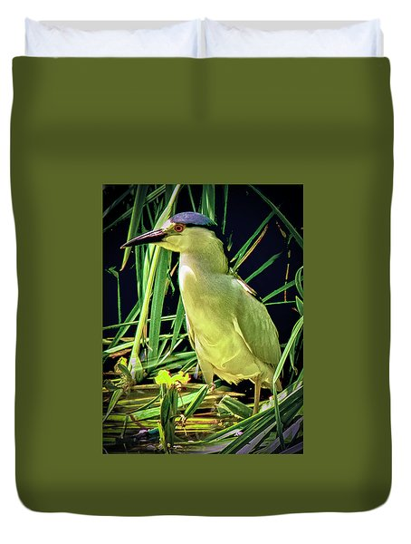 Duvet Cover featuring the photograph Black Crowned Night Heron by Joseph Hollingsworth