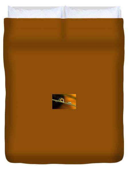 Black-eyed Susan In Dew Duvet Cover