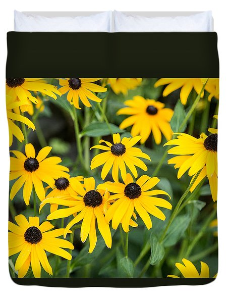 Black-eyed Susan Up Close Duvet Cover