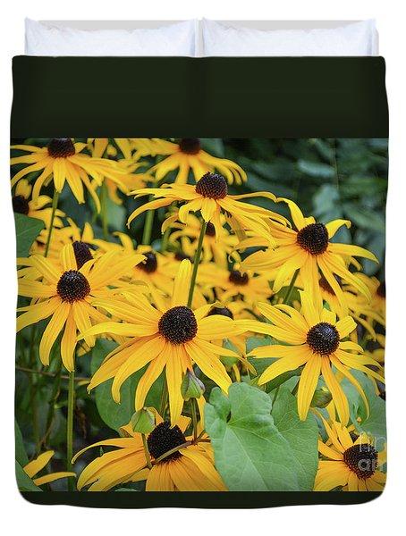 Black-eyed-susans Duvet Cover