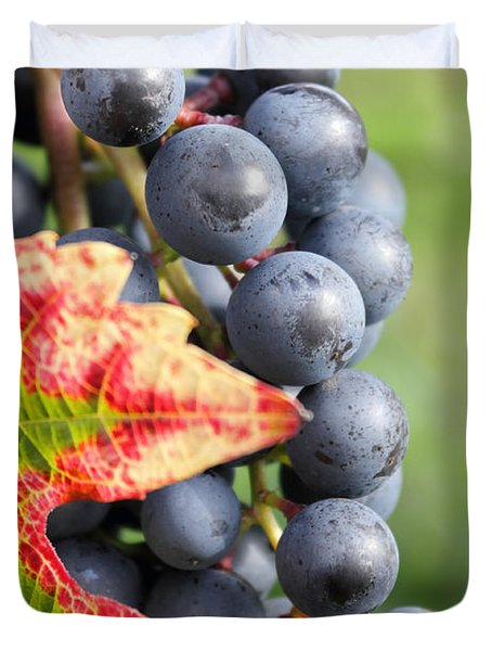 Black Grapes On The Vine Duvet Cover