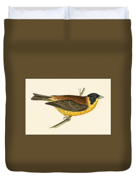 Black Headed Bunting Duvet Cover by English School