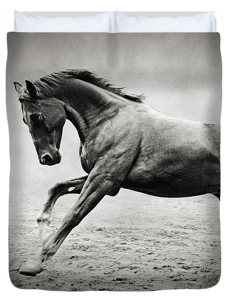 Black Horse In Dust Duvet Cover