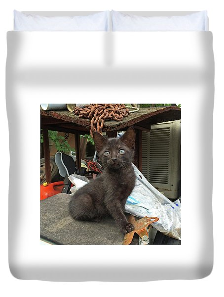 Black Kitten Duvet Cover