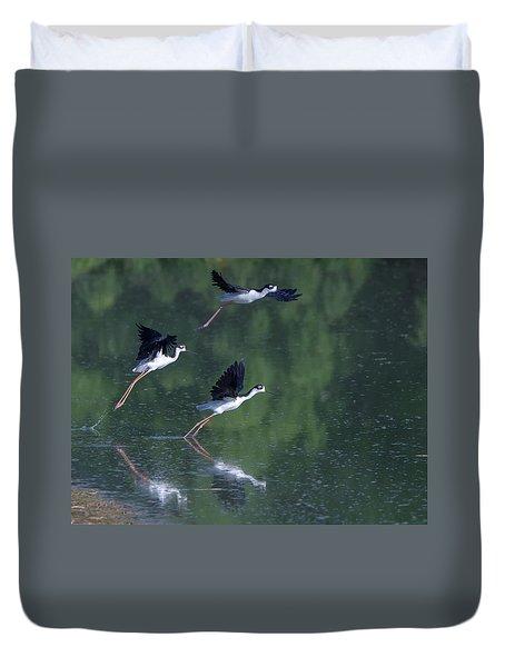 Black-necked Stilts 4302-080917-2cr Duvet Cover