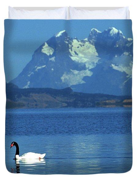 Black Necked Swan On Last Hope Sound Chile Duvet Cover