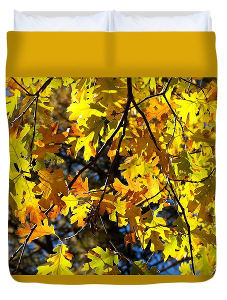 Black Oak November Duvet Cover by Michele Myers