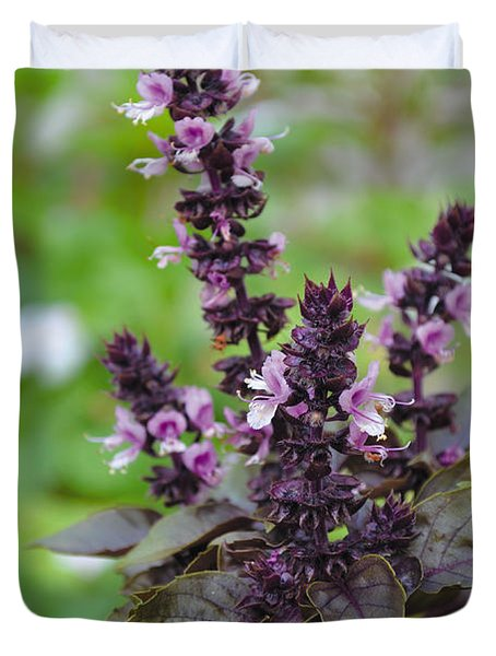 Black Opal Basil Flower Duvet Cover