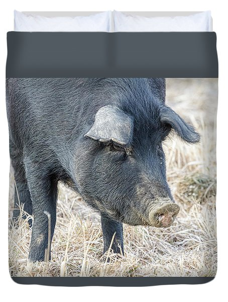 Duvet Cover featuring the photograph Black Pig Close-up by James BO Insogna