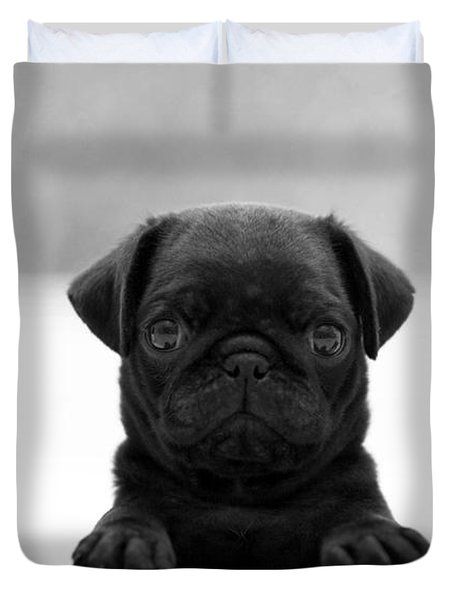 Black Pug Duvet Cover