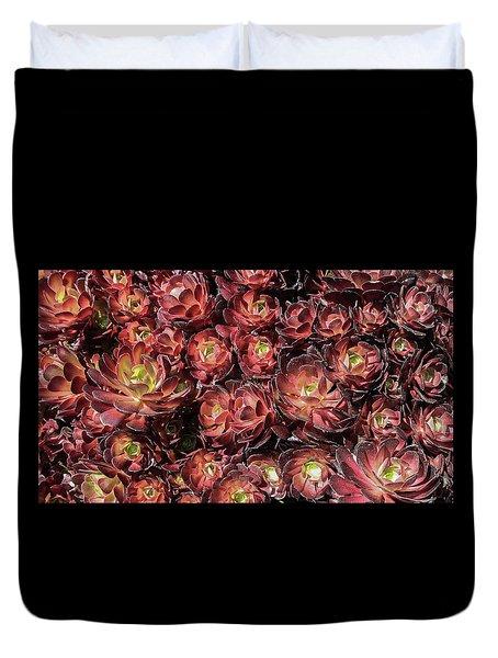 Black Roses Duvet Cover