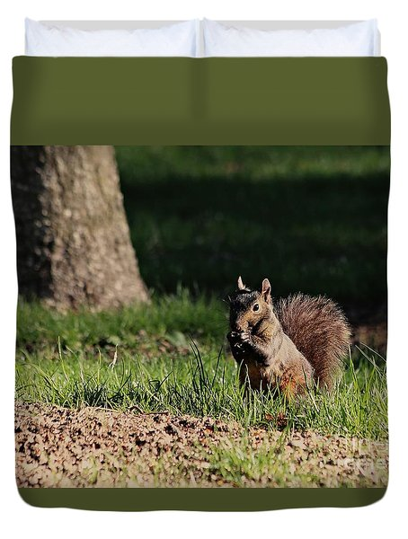 Duvet Cover featuring the photograph Black Squirrel by Kenny Glotfelty