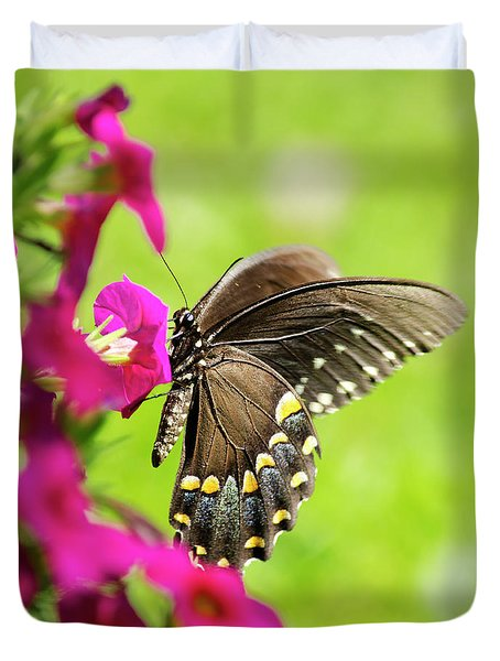 Duvet Cover featuring the photograph Black Swallowtail Butterfly by Christina Rollo