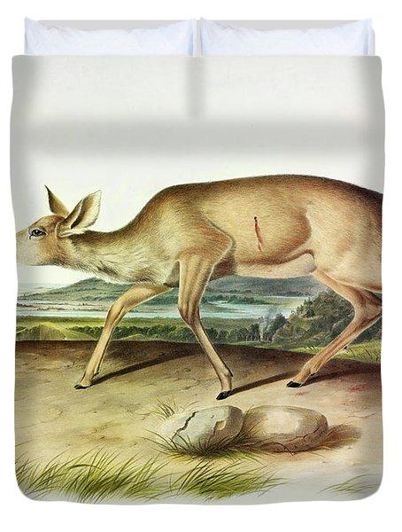 Black-tailed Deer Duvet Cover