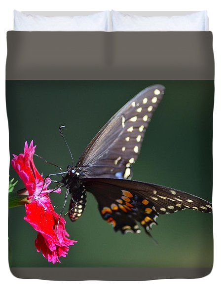 Black Tiger Swallowtail Duvet Cover
