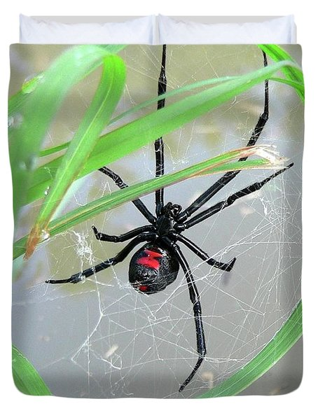 Black Widow Wheel Duvet Cover by Al Powell Photography USA