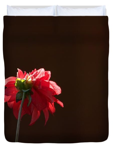 Black With Rose Duvet Cover