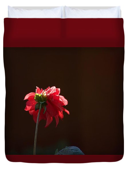 Black With Rose Duvet Cover