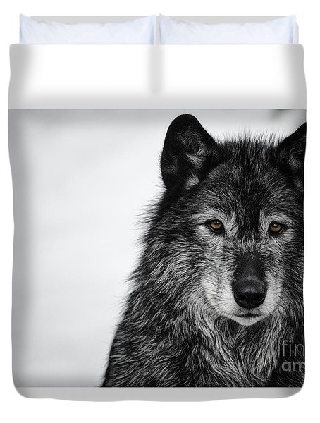 Black Wolf I Duvet Cover
