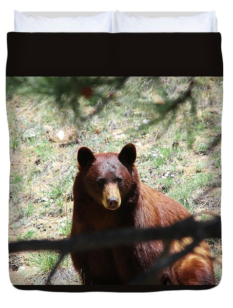 Blackbear1 Duvet Cover