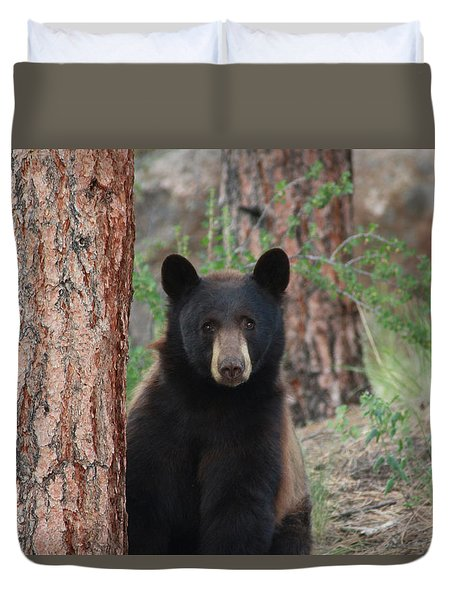 Blackbear2 Duvet Cover