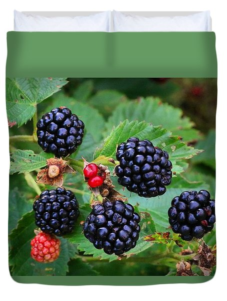 Blackberries 2 Duvet Cover