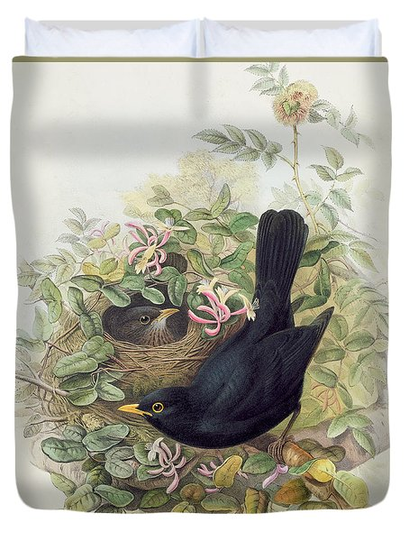 Blackbird,  Duvet Cover by John Gould