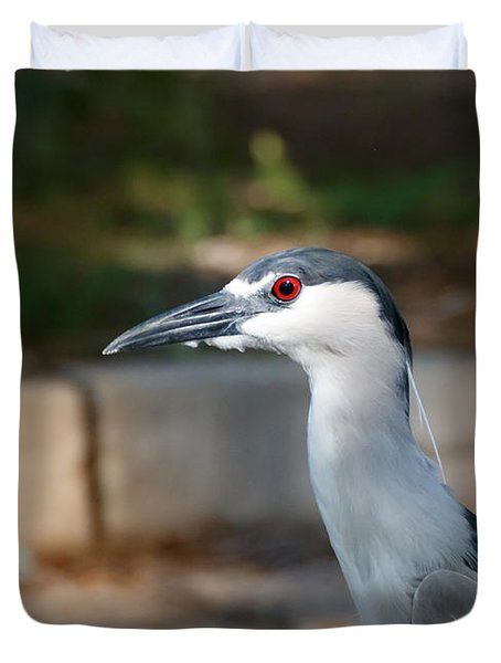 Blackcrowned Night Heron Duvet Cover