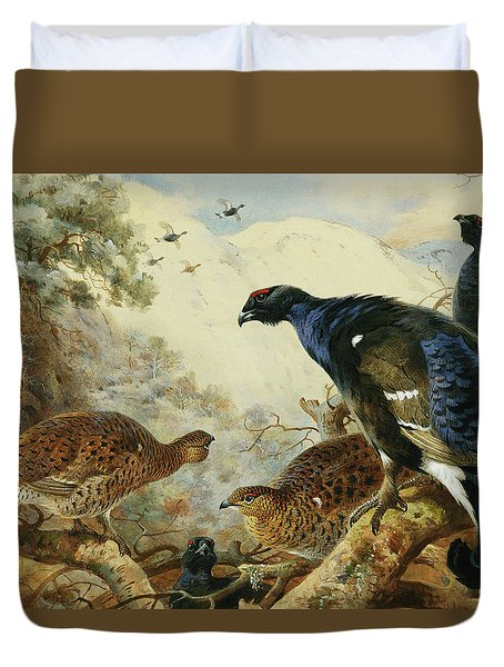 Blackgame Or Black Grouse Duvet Cover by Archibald Thorburn