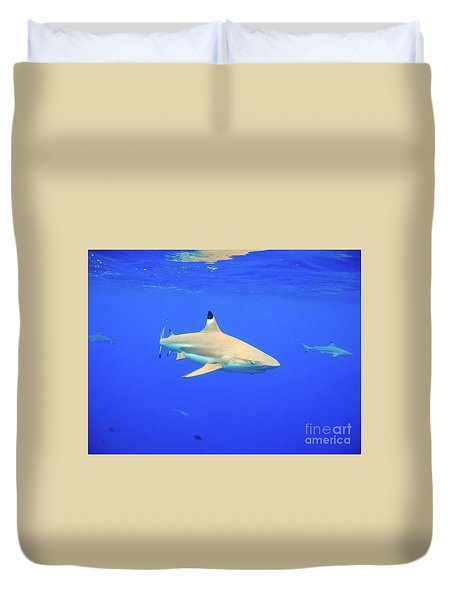 Blacktip Reef Shark Duvet Cover
