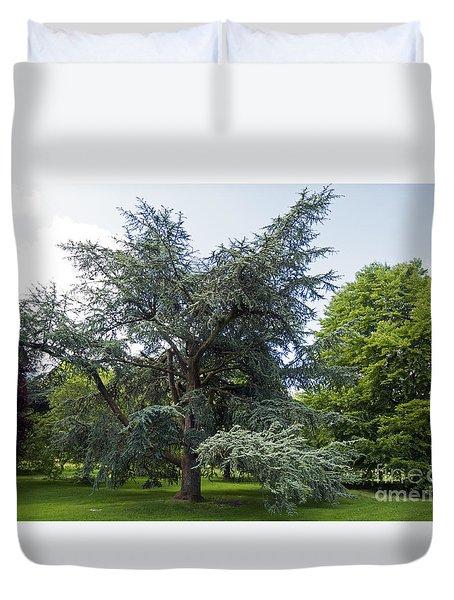 Blarney House Grounds Duvet Cover