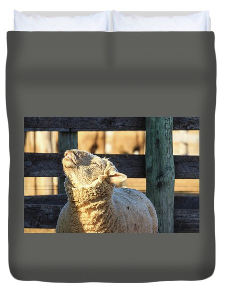 Bleating Sheep Duvet Cover