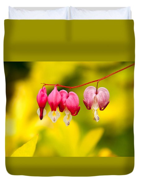 Duvet Cover featuring the photograph Bleeding Hearts by Erin Kohlenberg